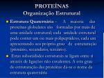 prote nas organiza o estrutural3