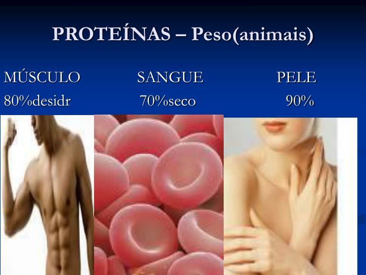 PROTEÍNAS – Peso(animais)