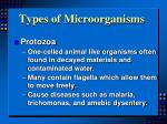 types of microorganisms3