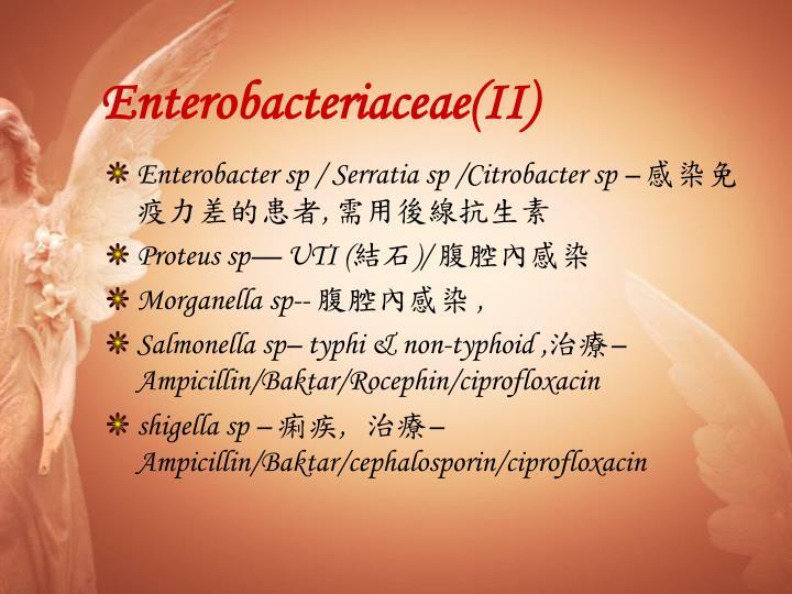 Enterobacteriaceae(II)