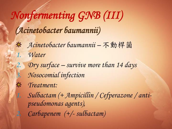 Nonfermenting GNB (III)