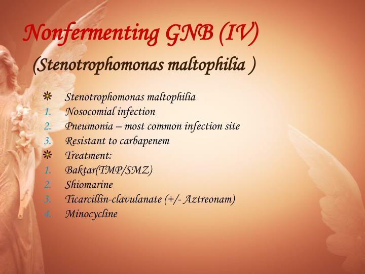 Nonfermenting GNB (IV)