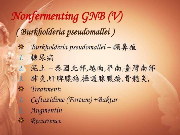 Nonfermenting GNB (V)