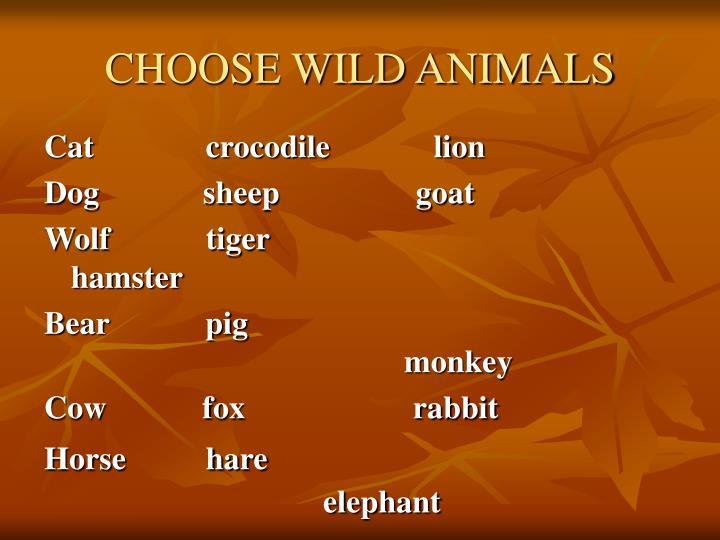 Choose wild animals