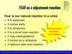 fear as a adjustment reaction