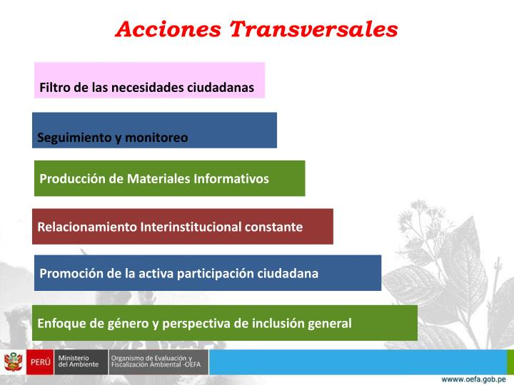 Acciones Transversales