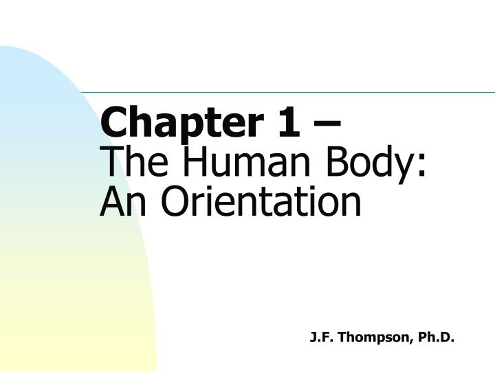 PPT - Chapter 1 – The Human Body: An Orientation PowerPoint ...
