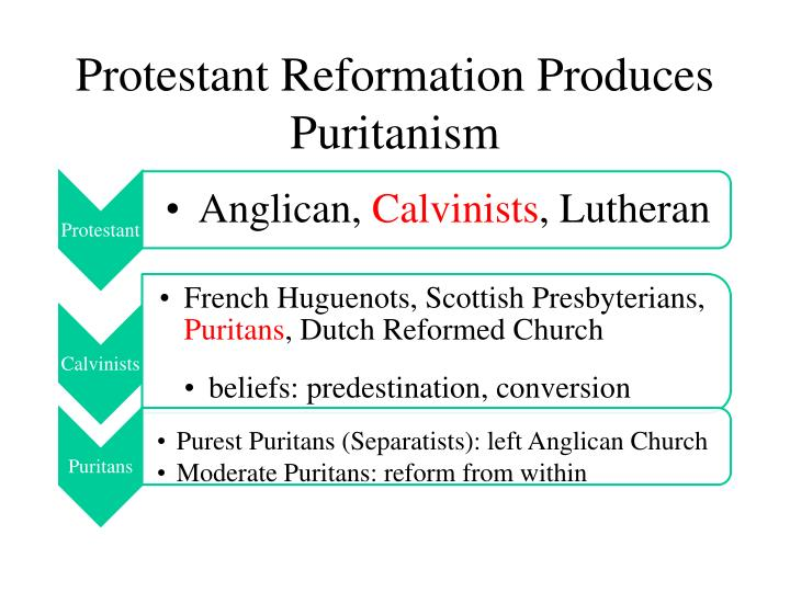 Protestant Reformation Produces Puritanism
