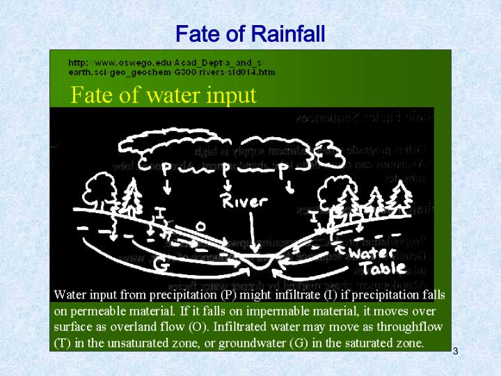 Fate of rainfall