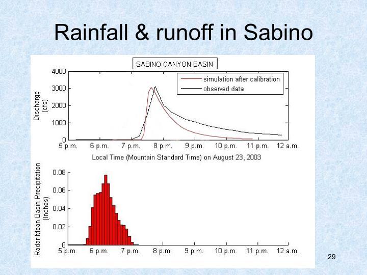 Rainfall & runoff in Sabino