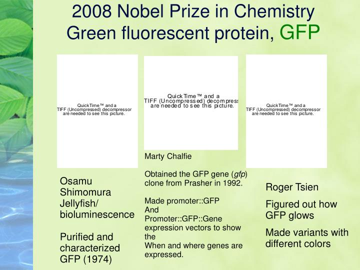 2008 nobel prize in chemistry green fluorescent protein gfp