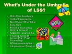 what s under the umbrella of lss