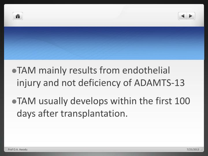 TAM mainly results from endothelial injury and not deficiency of ADAMTS-13