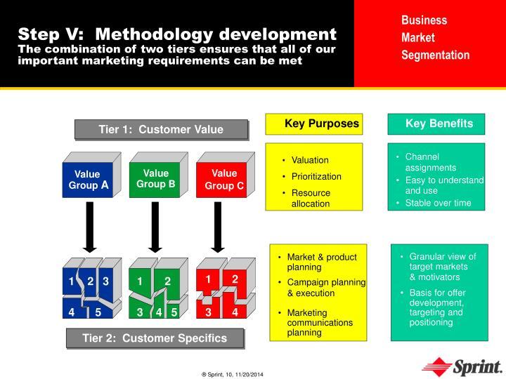 Step V:  Methodology development