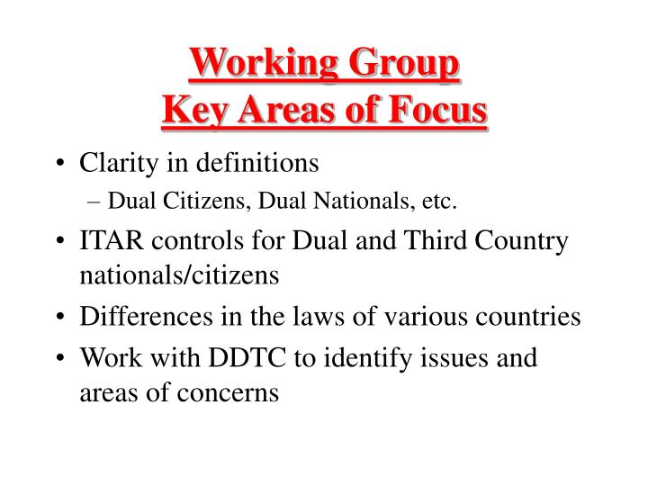 Working group key areas of focus