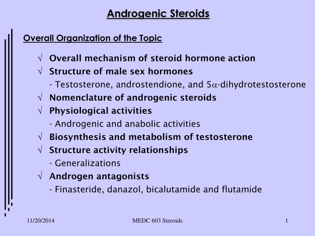 PPT - Androgenic Steroids PowerPoint Presentation - ID:6877118