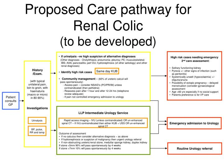 proposed care pathway for renal colic to be developed
