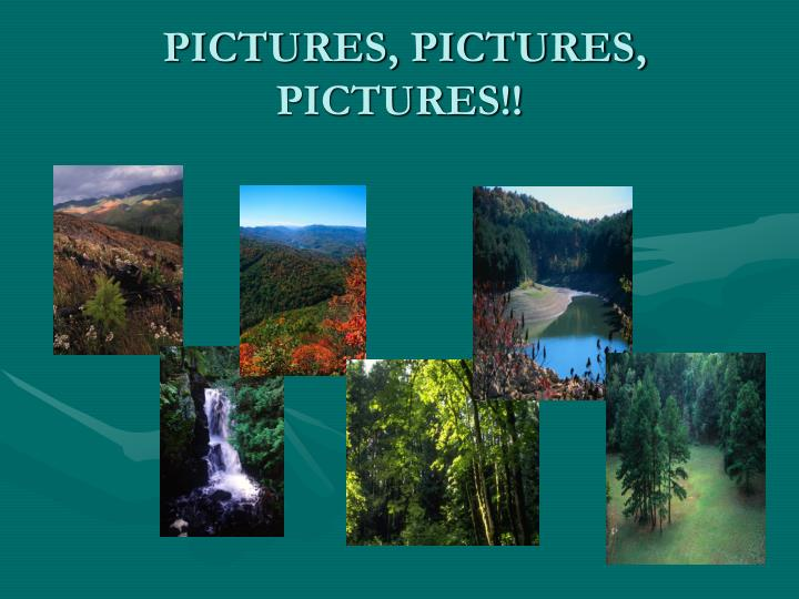 PICTURES, PICTURES, PICTURES!!