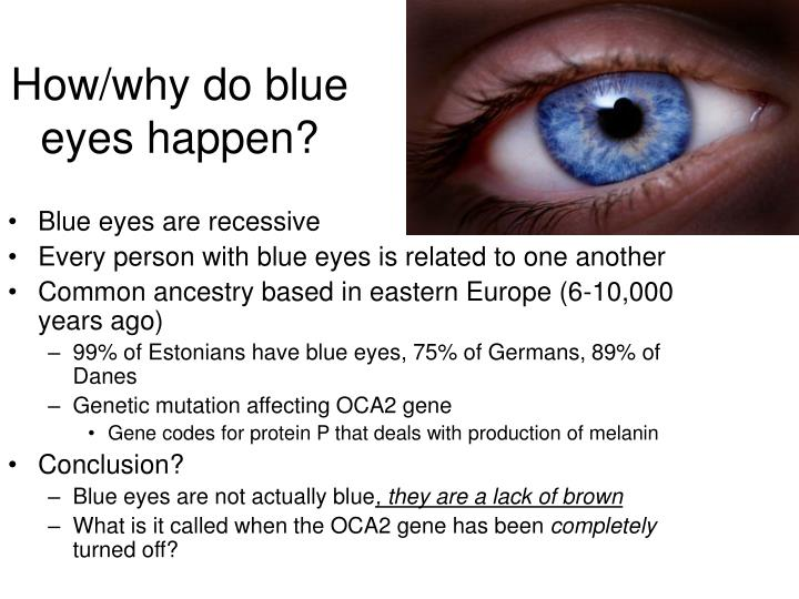 How/why do blue eyes happen?