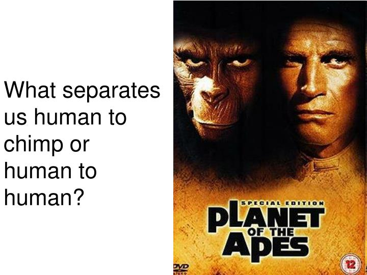 What separates us human to chimp or human to human?