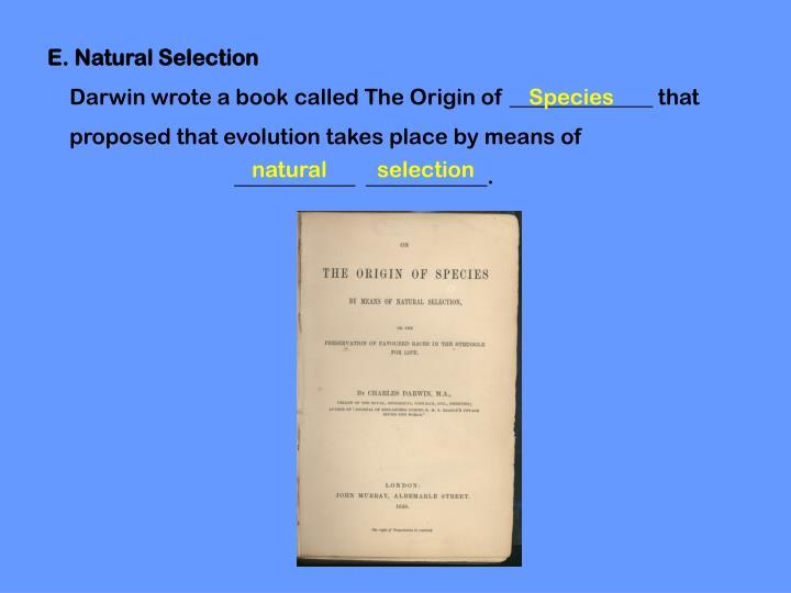 E. Natural Selection