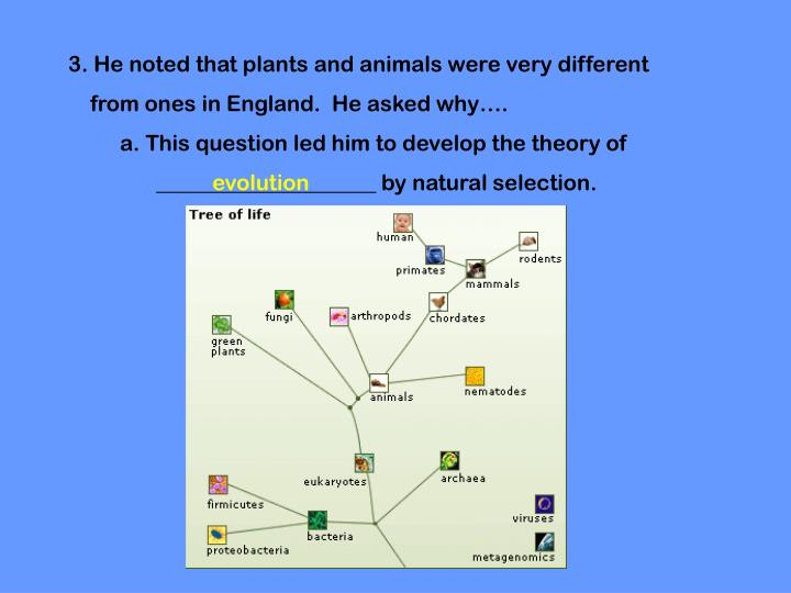 3. He noted that plants and animals were very different
