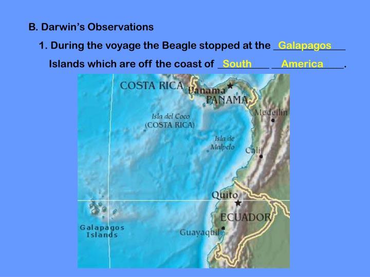 B. Darwin's Observations