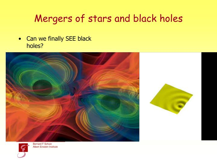 Mergers of stars and black holes