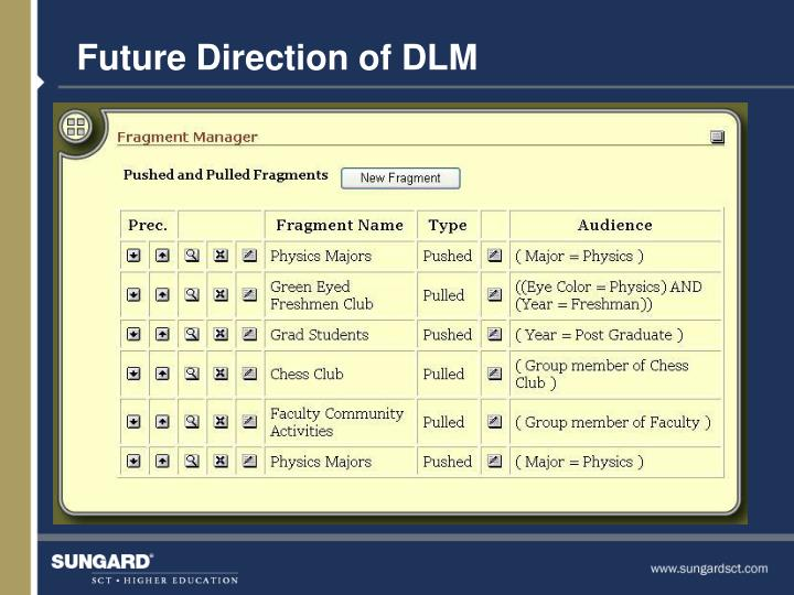 Future Direction of DLM