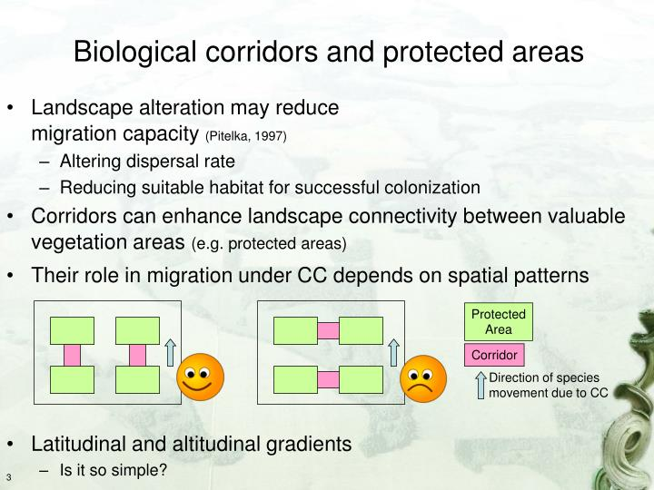 Biological corridors and protected areas