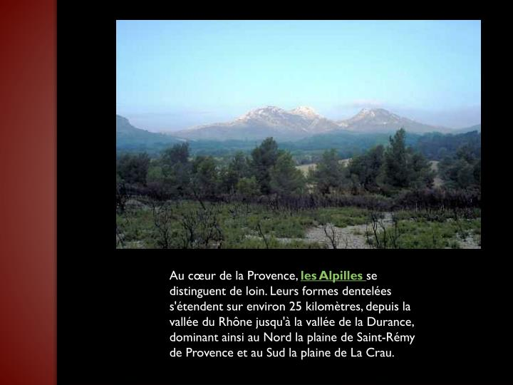 Au cœur de la Provence,