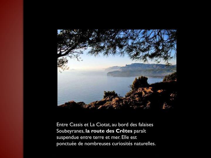 Entre Cassis et La Ciotat, au bord des falaises Soubeyranes,