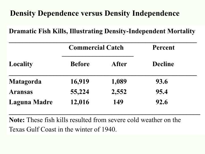 Density Dependence versus Density Independence