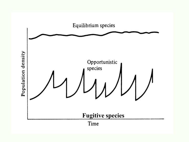 Fugitive species