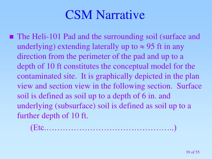 CSM Narrative