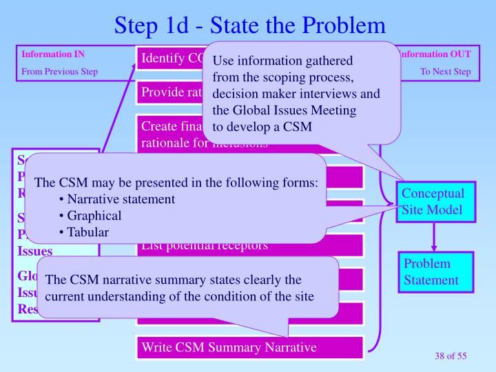 Step 1d - State the Problem