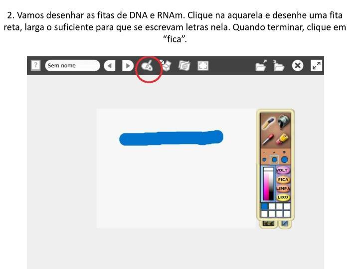 """2. Vamos desenhar as fitas de DNA e RNAm. Clique na aquarela e desenhe uma fita reta, larga o suficiente para que se escrevam letras nela. Quando terminar, clique em """"fica""""."""