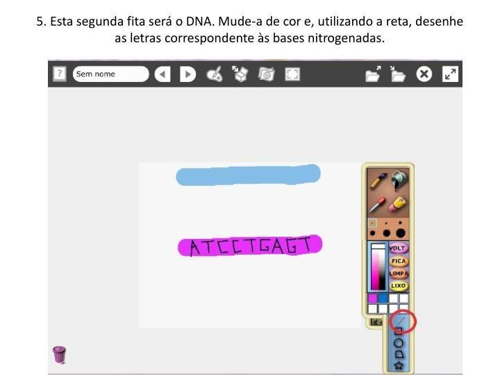 5. Esta segunda fita será o DNA. Mude-a de cor e, utilizando a reta, desenhe as letras correspondente às bases nitrogenadas.