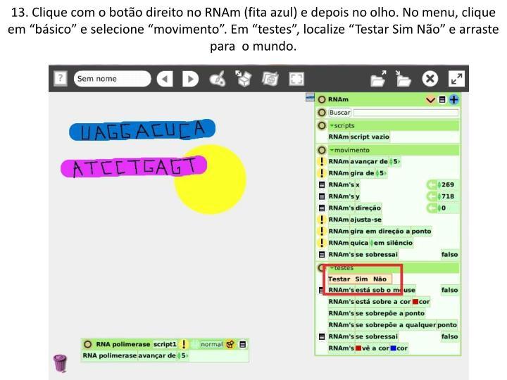"""13. Clique com o botão direito no RNAm (fita azul) e depois no olho. No menu, clique em """"básico"""" e selecione """"movimento"""". Em """"testes"""", localize """"Testar Sim Não"""" e arraste para  o mundo."""