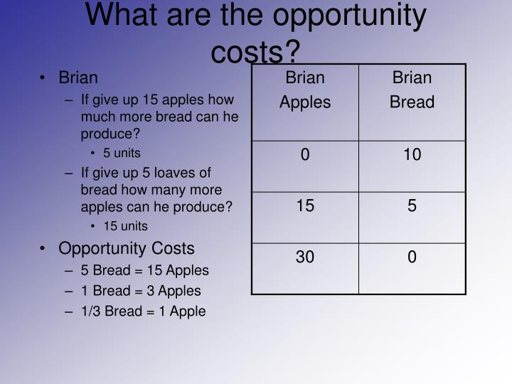 What are the opportunity costs?