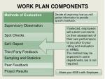work plan components1