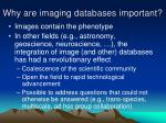 why are imaging databases important