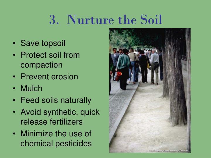 3.  Nurture the Soil