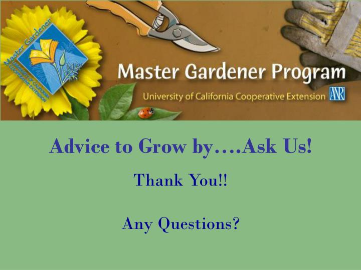 Advice to Grow by….Ask Us!
