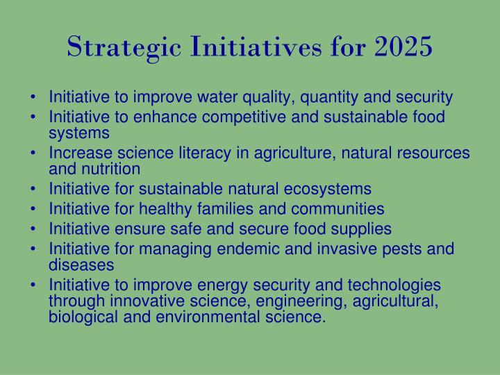 Strategic initiatives for 2025