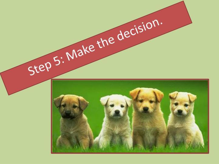 Step 5: Make the decision.