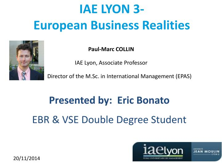 iae lyon 3 european business realities n.