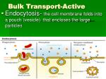 bulk transport active