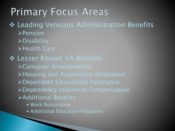 Primary focus areas