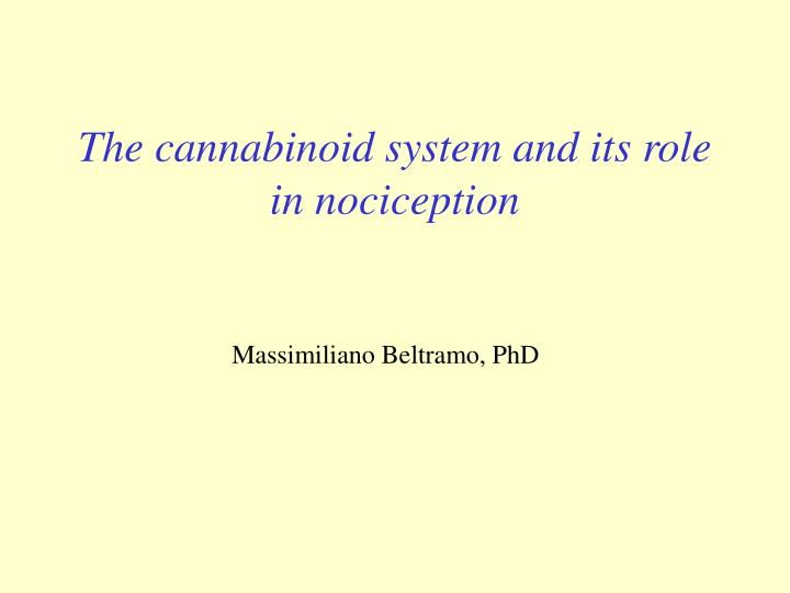 the cannabinoid system and its role in nociception n.